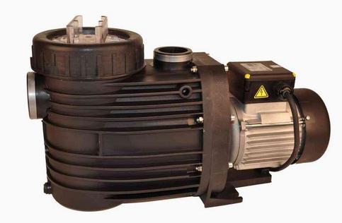 Pumpe Speck Bettar 12, 230 V mit Kabel und Stecker